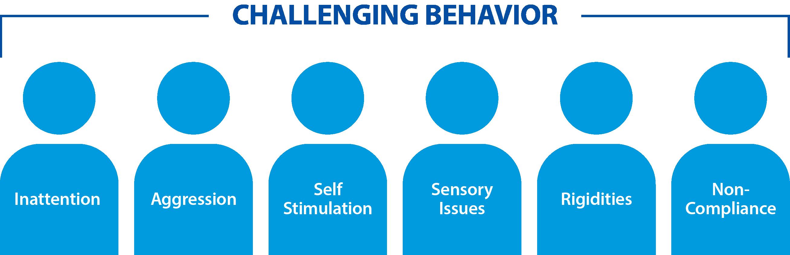 autism-partnership-aba-challenging-behavior